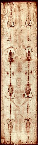 Całun Turyński ma wymiary 437x113 cm